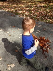 Collecting leaves 10-20-12